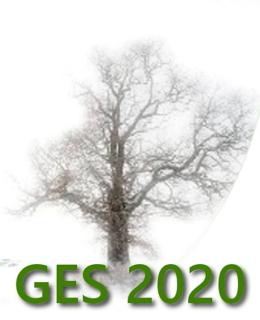 Logo1-GES2020-643